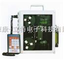 硫化氫分析儀801P型