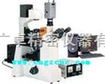 倒置熒光顯微鏡,顯微鏡