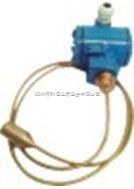 BLH802杆式液位变送器