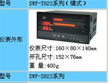 SWP-T823双回路数字控制仪