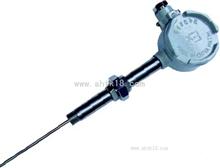 固定螺纹管接头式防爆热电偶