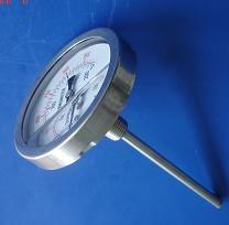 工业用耐震双金属温度计