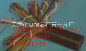 充油通信电缆HYAT ZRC-HYAT WDZ-HYAT HYYT 全塑市话电缆