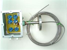 WRNK-438D多点热电偶