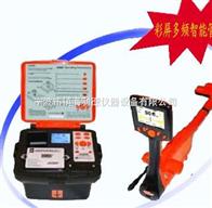 i5000/Ri5000/R管线探测定位仪