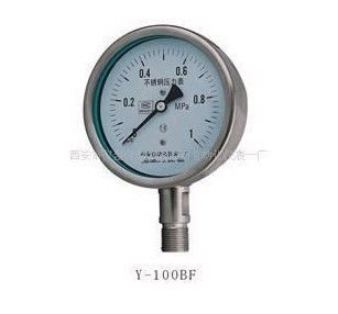 Y-100BF,不锈钢压力表,Y-60B,Y-150BF
