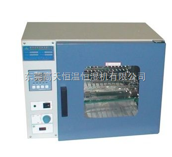 GT-TK-81B-电热干燥箱