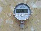 YS-100数字精密压力表