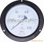 不锈钢压力表Y-60BF/Y-100BF