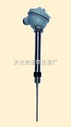 固定螺纹接头式热电偶