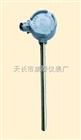 无固定装置热电偶