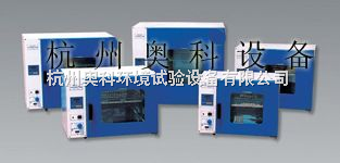 台式高温快速干燥箱空气对流老化烘箱