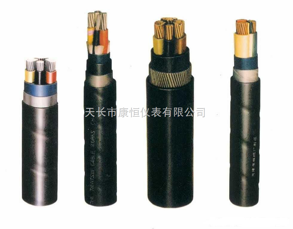 计算机用电缆- DJYVP2V 2X2X1.5计算机屏蔽控制电缆价格及生产厂