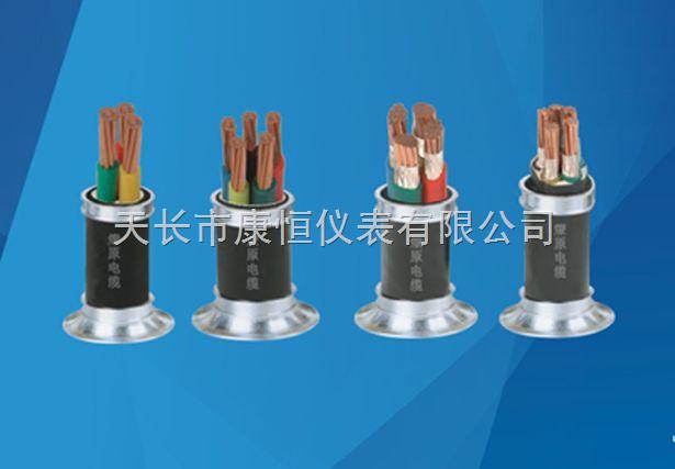 NH-KVV42-50X1.5价格 NH-KVV NH-KVVP NH-KFF 耐火电缆8*1.5