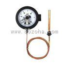 WTZ-288电接点压力式温度计WTQ-288