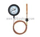 WTZ-280,WTQ-280压力式温度计