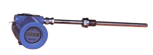 WZP-240B一体化防爆热电阻