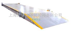 SCS-10T数字式电子地磅,电子地磅称,上海地磅称