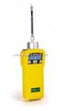 MiniRAE 2000 VOC检测仪PGM-7600