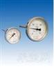 WSS轴向型温度计