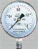 YTH-150耐温压力表