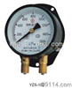 YZS-100双针压力表