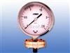 TP-150耐腐隔膜压力表