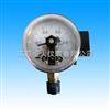 YD-100BF/150BF不锈钢电接点压力表